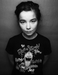 Björk (photo)
